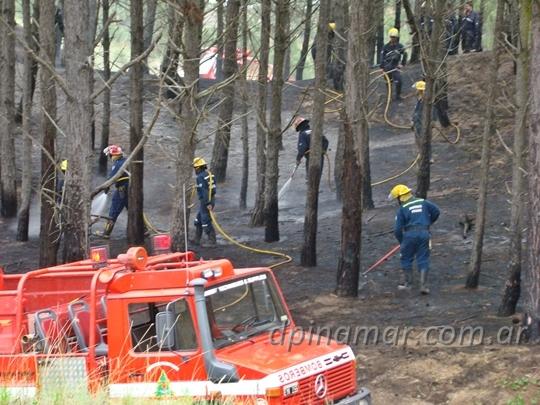 bomberos-incendio_01