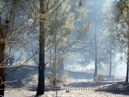 bomberos-incendio_05