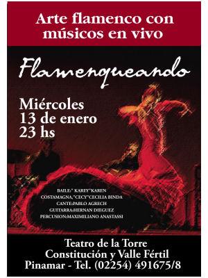 flamenco pinamar
