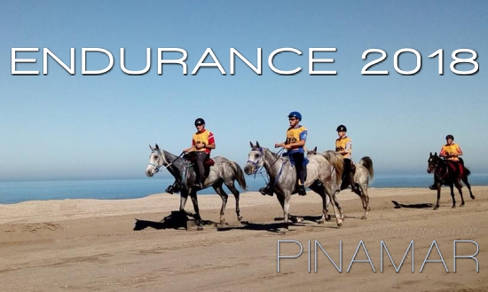 endurance 2018