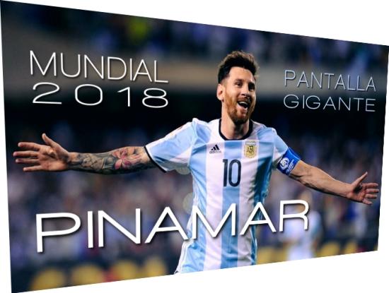mundial 2018 pinamar