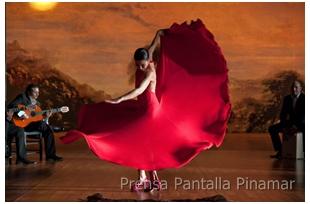 pantalla pinamar 2011 flamenco